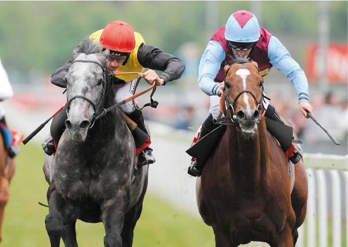 Shane Kelly (left) cajoles Geordieland to victory over Royal And Regal at York