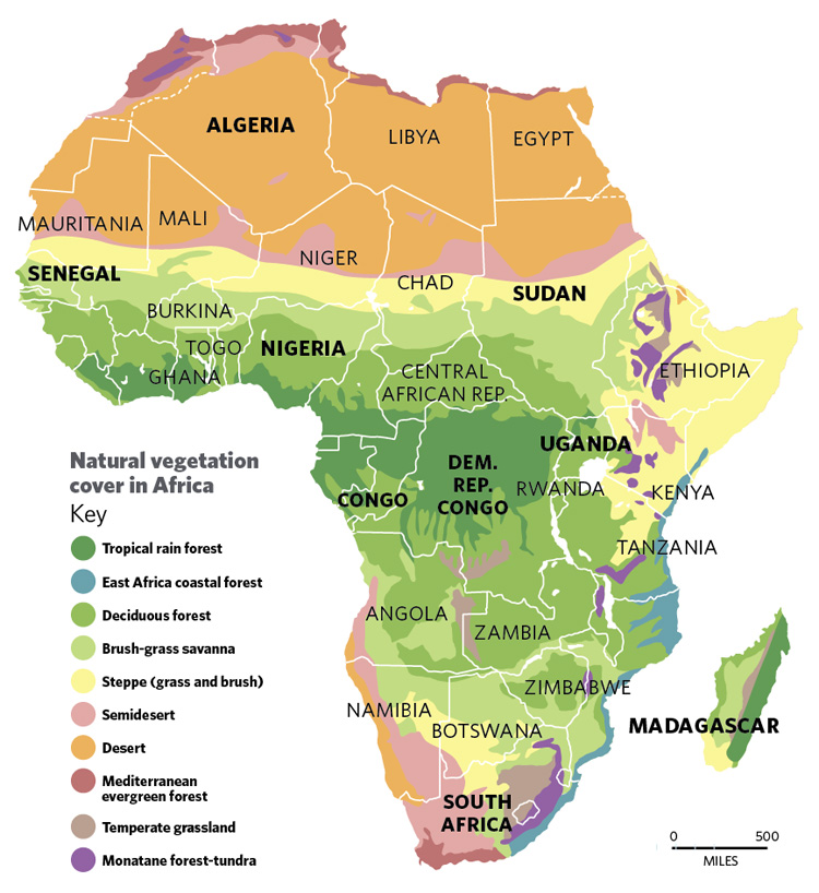 Nature laid waste: The destruction of Africa | The Independent
