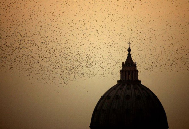 The battle to free Rome's skies of starlings | The Independent