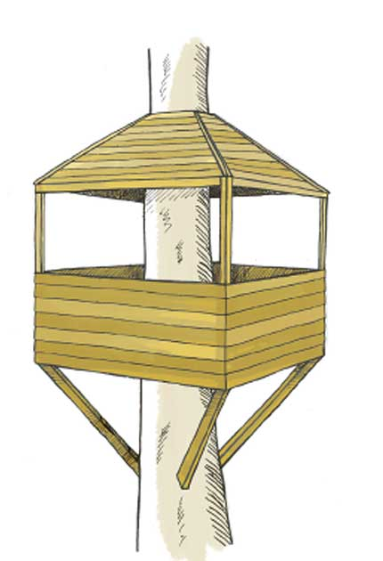 How to build a treehouse the independent for Free treehouse plans and designs