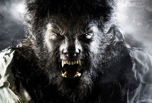 new moon rising return of the werewolf the independent