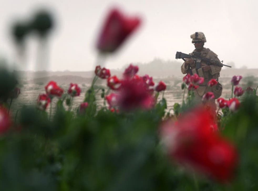 A two-month operation to clear poppy fields in Helmand has begun