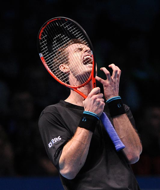 Andy Murray enjoyed a fine year, winning six titles and briefly reaching No 2 in the rankings
