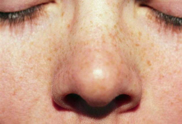 The nose has it: Stress affects the way we smell the world, according to research