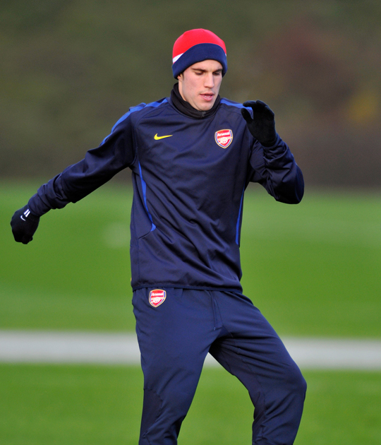 Arsenal can still win the title insists Van Persie