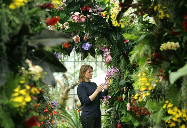 A taste of the tropics at Kew | The Independentindependent_brand_ident_LOGOUntitled