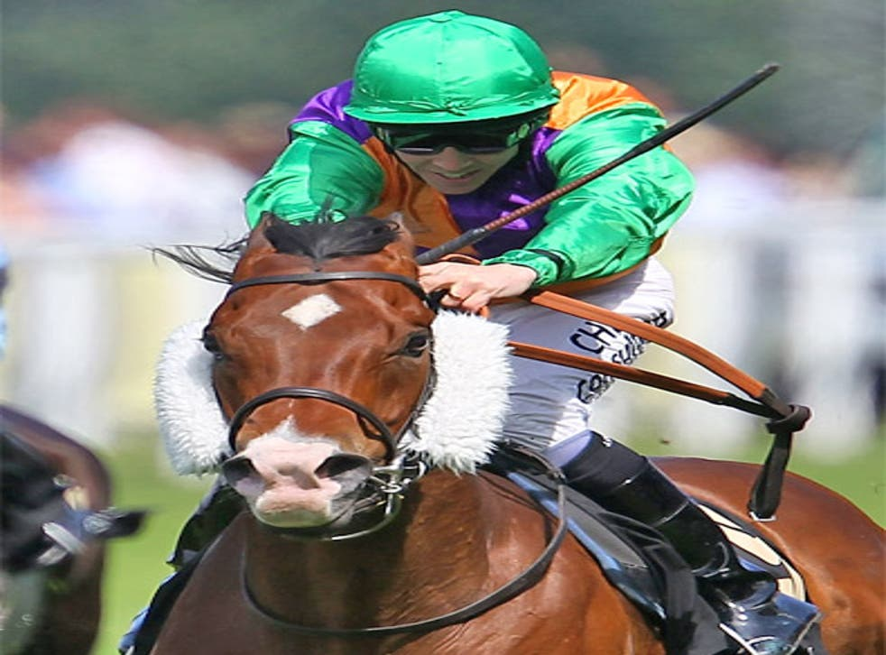 The King's Stand Stakes winner Prohibit reappears at York next week