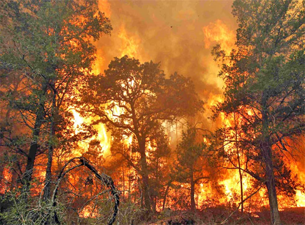 Flames burn out of control near Bastrop State Park in Texas