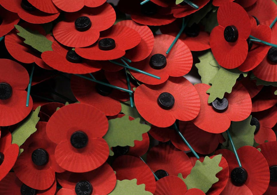 c1317c40bc Funds raised from the sale of poppies help the members of the armed forces  with financial