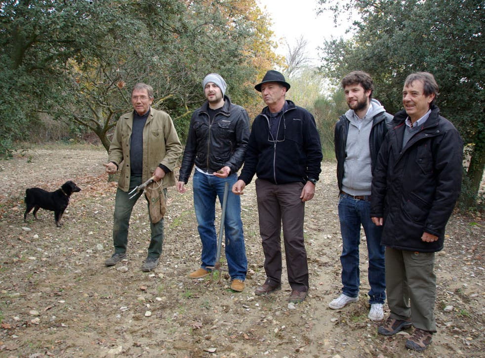 Truffle kerfuffle: 'People get nervous on truffle hunts' - the writer, second from left, his hunter-gatherer gang