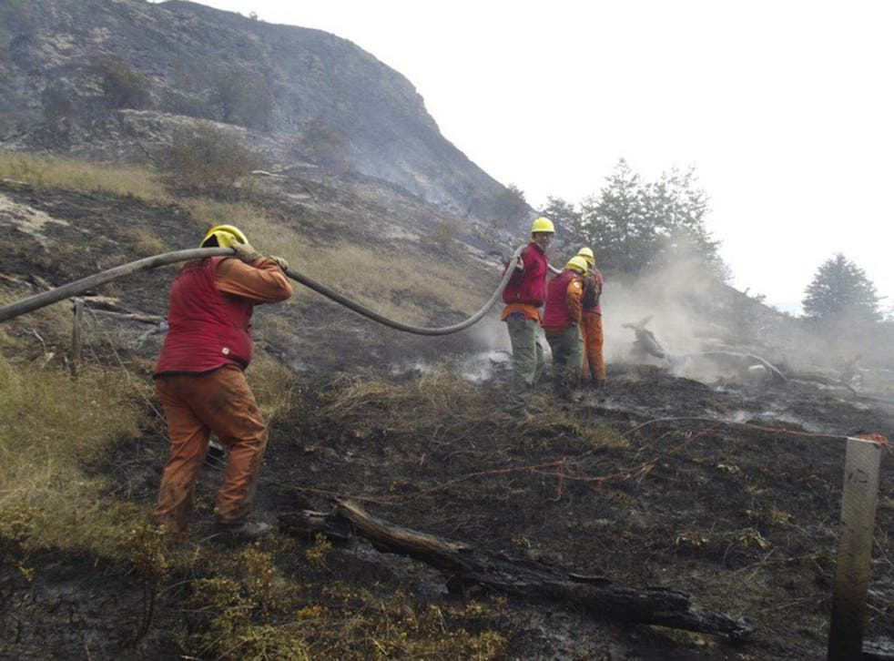 Fire crews fight the blazes in Chile's Torres del Paine national park which have been raging since Tuesday