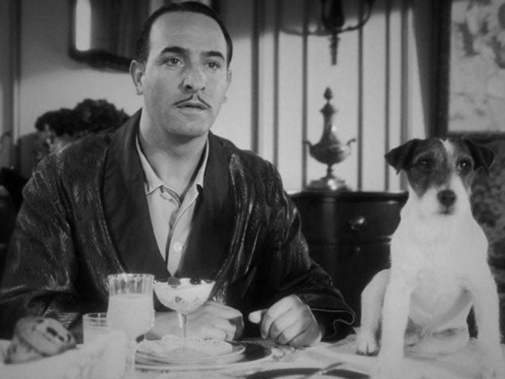 Hunting dogs in the cinema - from detective to comedy
