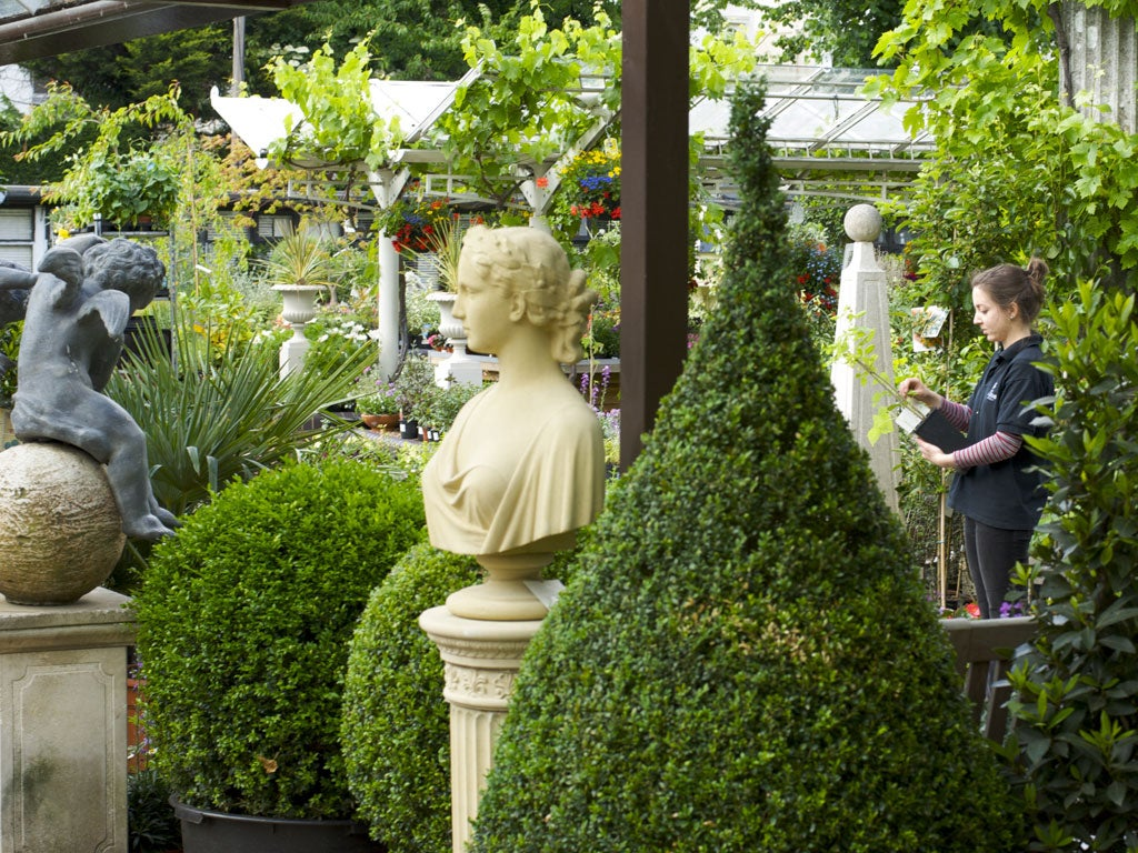 The 50 Best Garden Centres The Independent