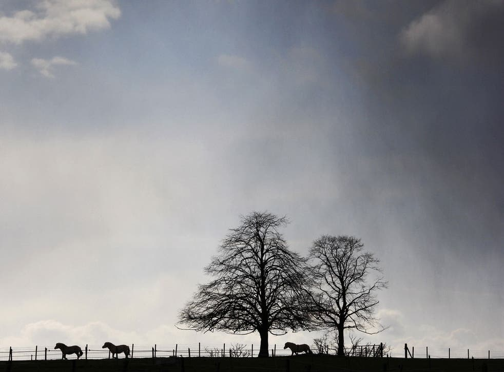 Out In The Cold: Dropping green policies clouds the outlook for the climate and economy alike