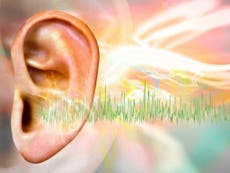 Tinnitus: How an alternative remedy became the only weapon against