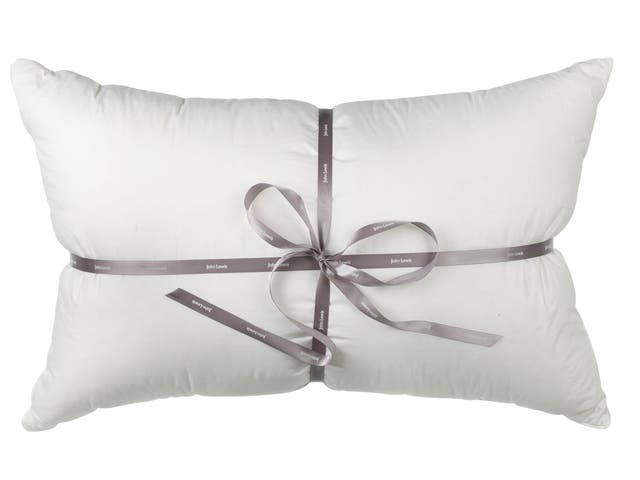 <p>1. John Lewis Winter Snow Goose Down</p><p>£150, johnlewis.com</p><p>A supremely comfortable pillow using down from geese native to Russia's glacial mountains.</p>