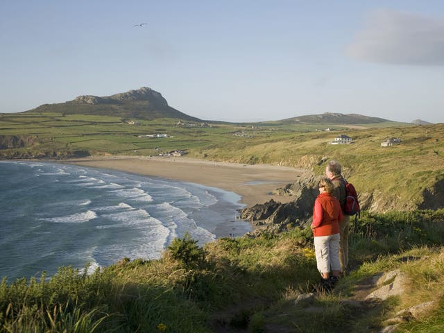 <p>The Dyfed Archaeological Trust say there is 'still a significant amount of evidence left to excavate'</p>