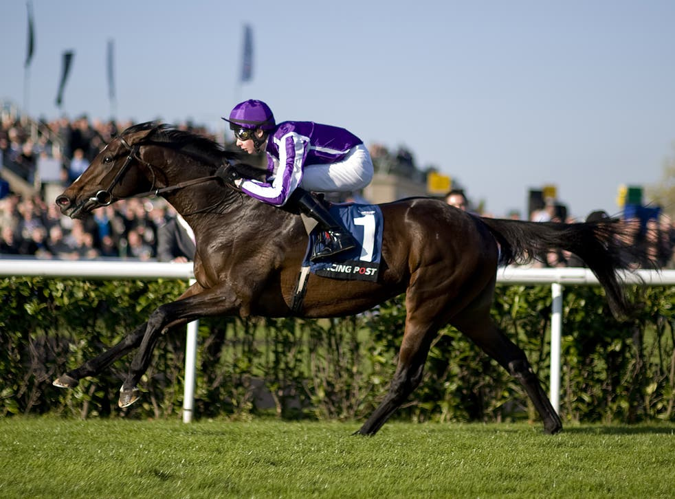 Camelot is likely to be the shortest Derby favourite since 1947