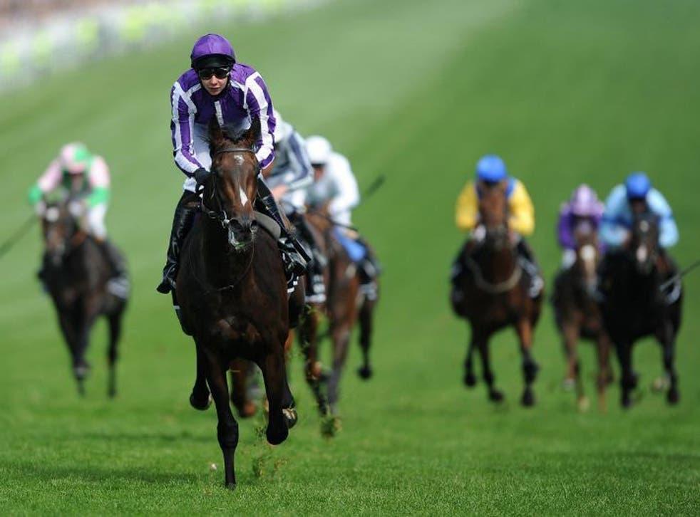 Epsom hero Camelot headlines Ireland's innovative evening Derby
