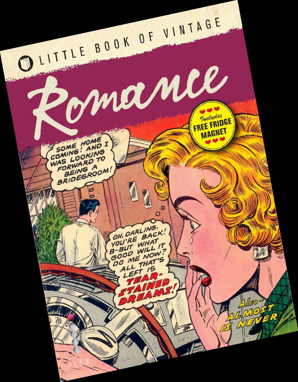 American Erotic Comics graphic novel: the erotic fiction that put the 'strip' into