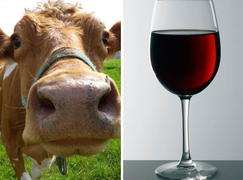 A farmer in the south of France says meat from cows fed with wine was 'tasty'
