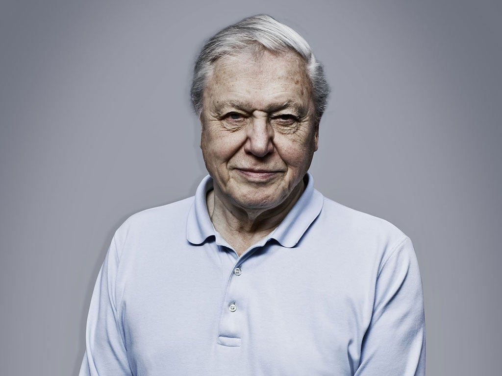 david attenborough vegetarian
