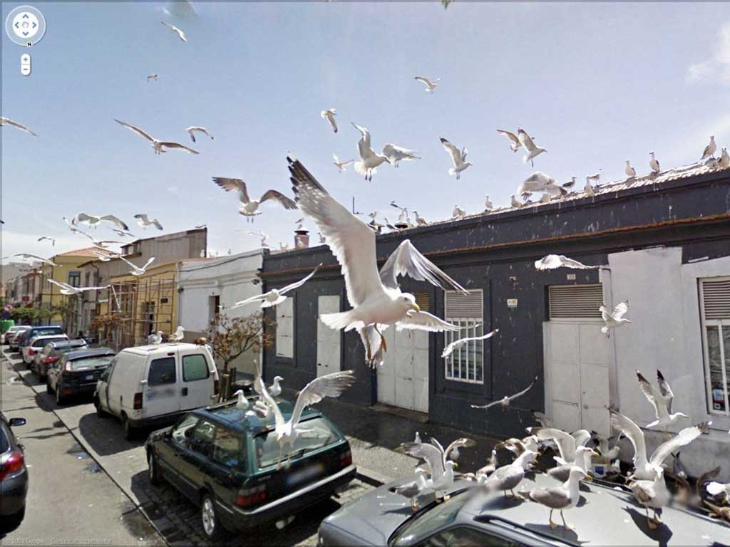 Google Street View Photographs The Man On The Street The