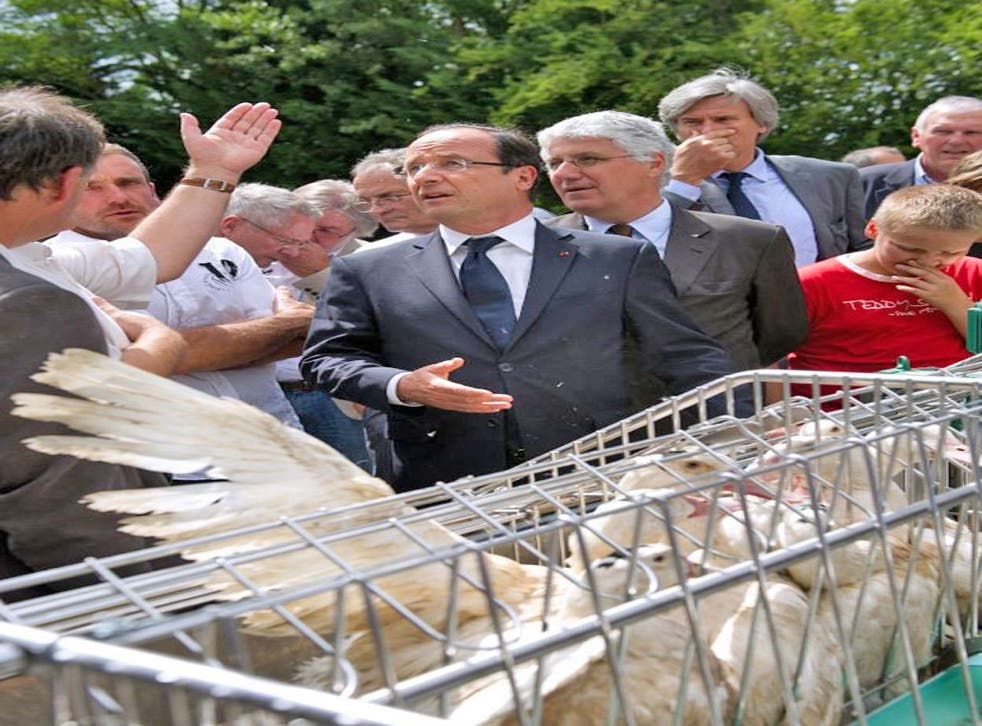François Hollande listens to the concerns of foie gras producers at a farm in Monlezun