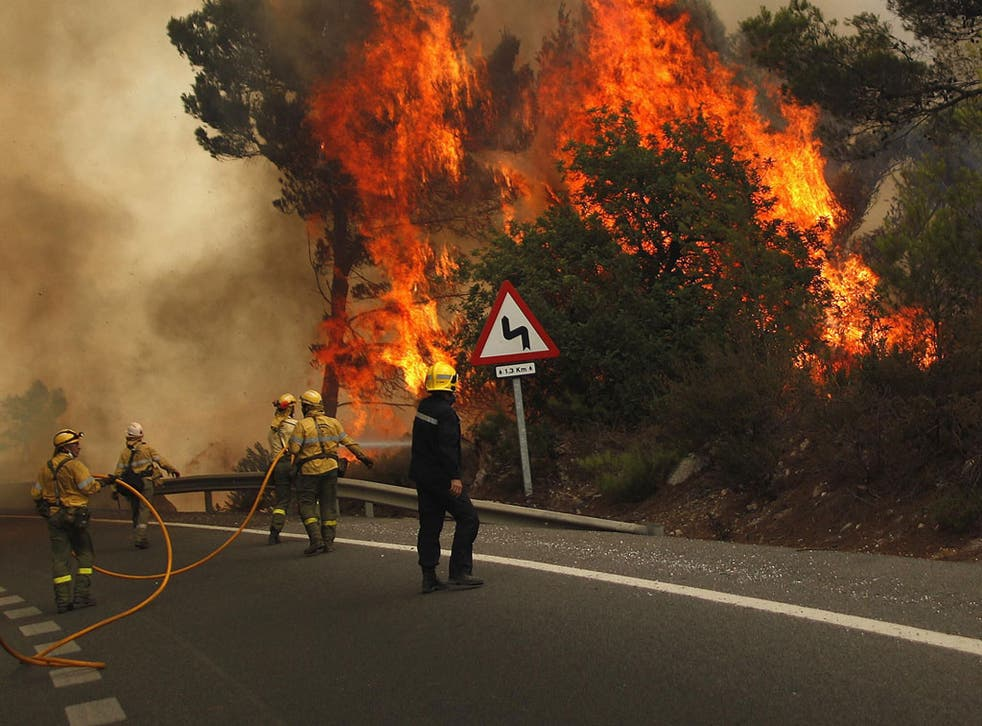 Wildfires have wreaked havoc along parts of the Costa del Sol in southern Spain