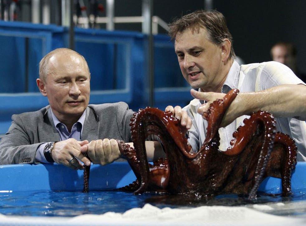 Vladimir Putin caresses an octopus at an oceanarium