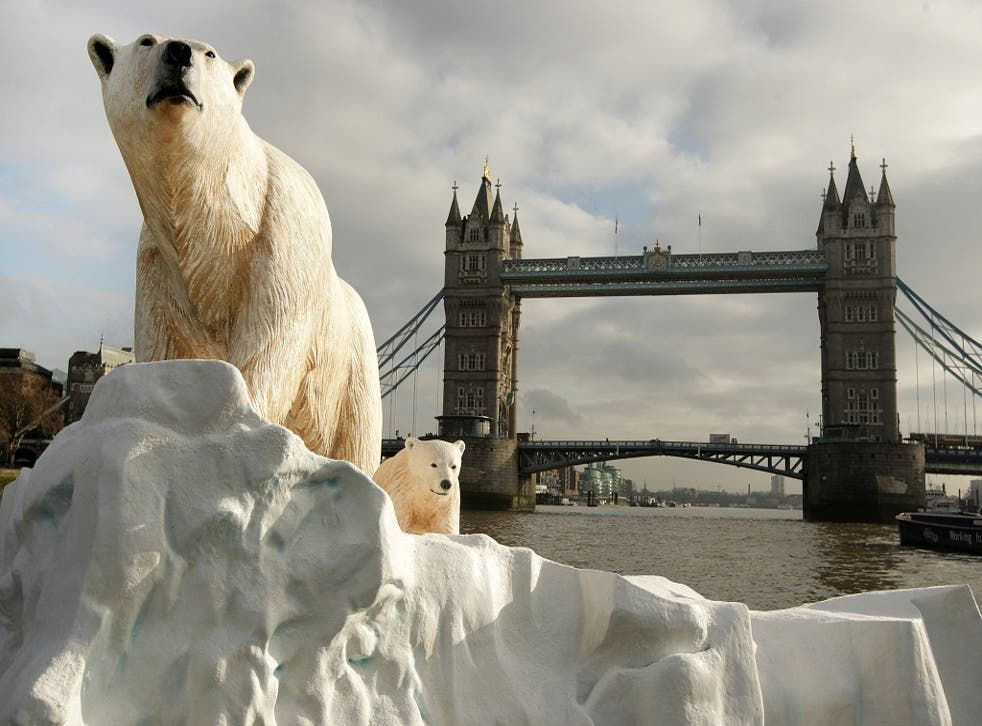 A 16 foot high sculpture of a polar bear and cub, afloat on a small iceberg on the River Thames, passes in front of Tower Bridge on January 26, 2009 in London