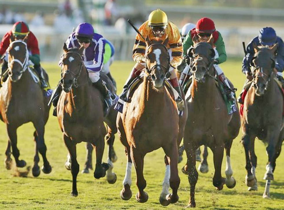 Wise Dan with John Velazquez (centre) in the irons races to win the Breeders' Cup Mile