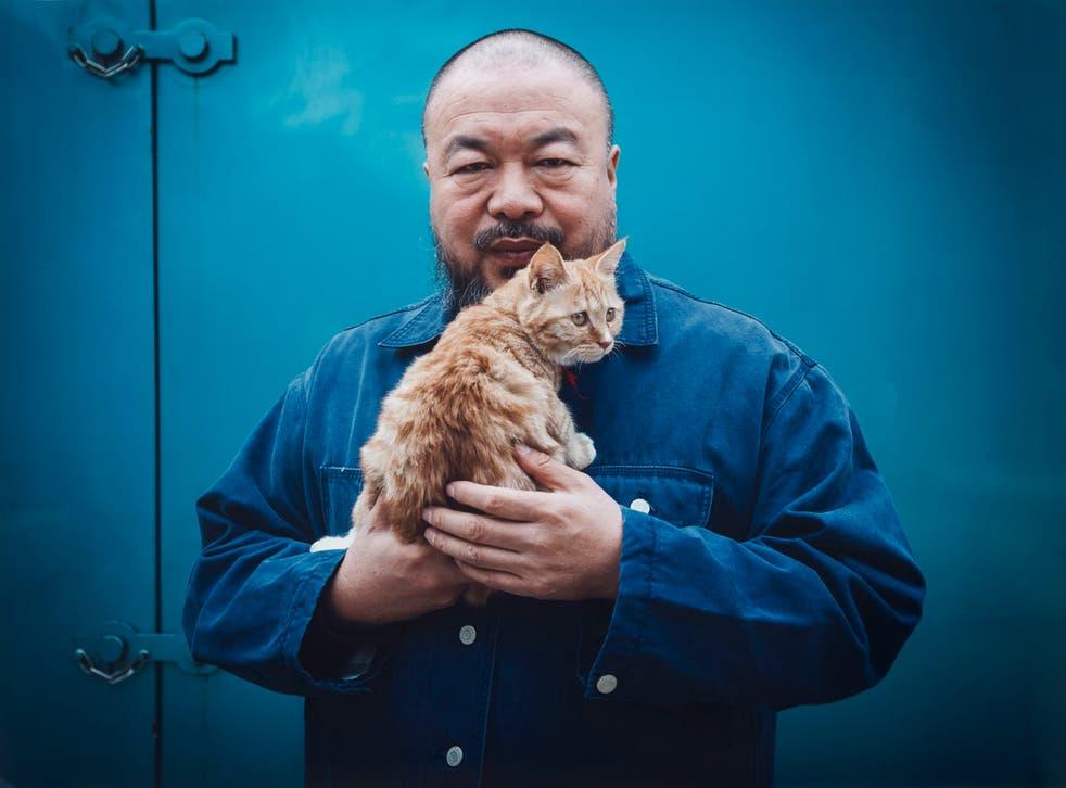 Imprisoned artist Ai Weiwei
