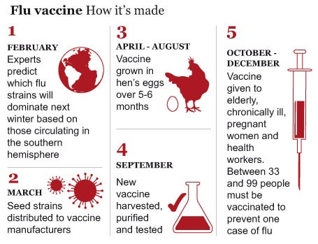 Read This Truth About Vaccines >> Scientists Urge Ministers Tell Truth On Over Hyped Flu Vaccine