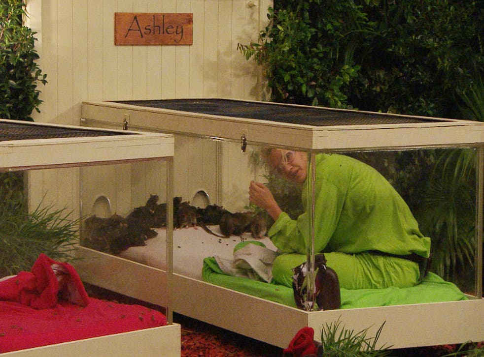 Ashley Roberts snuggles up with some little friends in I'm A Celebrity...Get Me Out of Here!