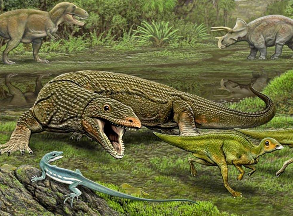 The lizard Obamadon looks on as the carnivorous lizard Palaeosaniwa stalks its Edmontosaurus prey