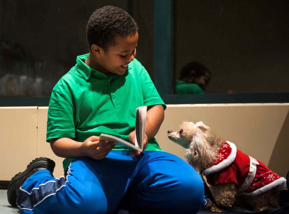 """Binyam Gebremeskel, 9, of Alexandria, Virginia, is delighted that Lucy, a toy poodle, seems interested in """"Ricky Ricotta's Mighty Robot,"""" the book he's reading to her at Beatley Central Library."""