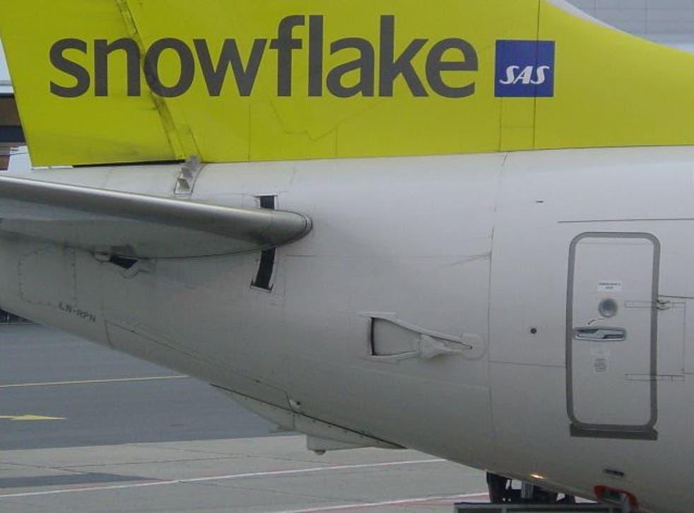 Thaw point: SAS offshoot Snowflake was a failure
