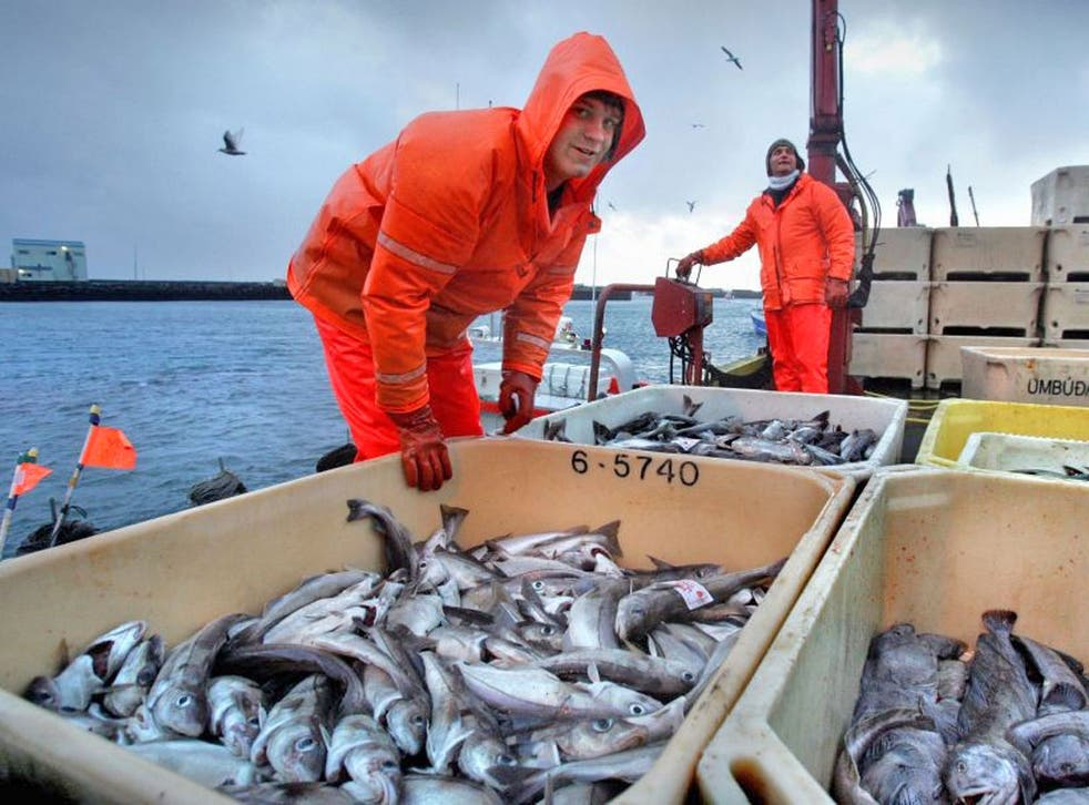 """The mackerel fish has joined the likes of North Sea turbot and most sea bass on the """"caution"""" list of species people should buy only occasionally"""