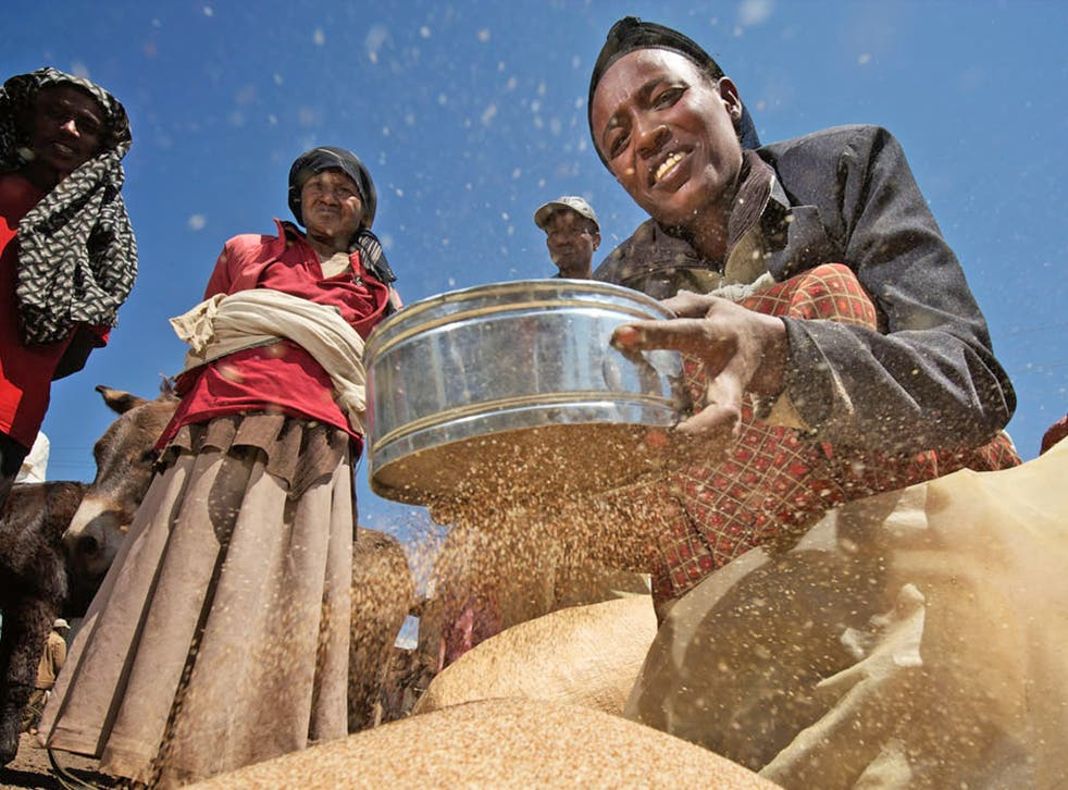 The monopoly over the global food supply is harming African farmers