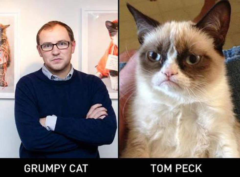 Independent reporter Tom Peck and a Grumpy Cat. But which is which?
