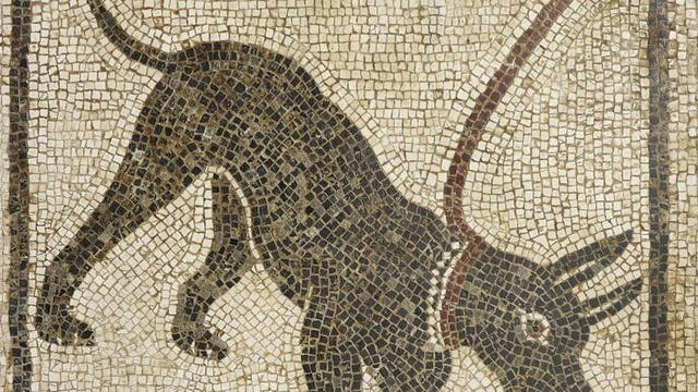 Life and death in Pompeii and Herculaneum – British Museum: Priceless treasures from the cities destroyed by the Mount Vesuvius eruption will aim to satisfy the international fascination with the disaster when screened on 18 June