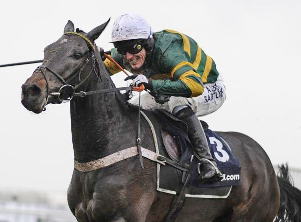 Tony McCoy gave up his other mounts after Darlan's fall