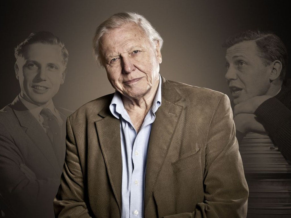 Discussion on this topic: Phyllis Allen, richard-attenborough-1923-014/