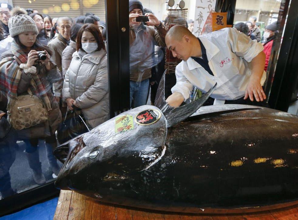A Sushi Zanmai staff member polishes the 222kg tuna at Tsukiji market in Tokyo