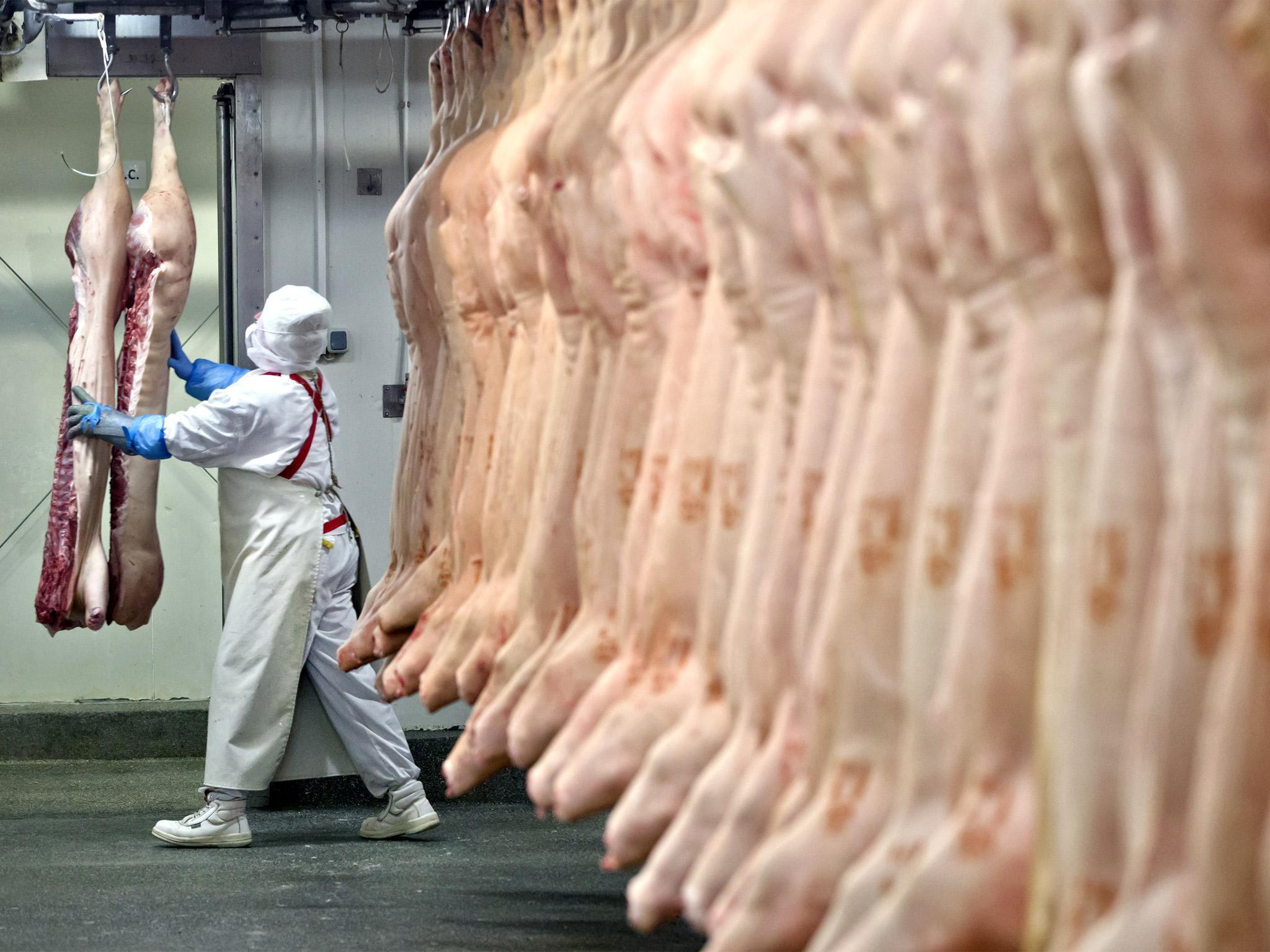 Never mind CCTV in slaughterhouses – we need to end the meat and dairy industry altogether