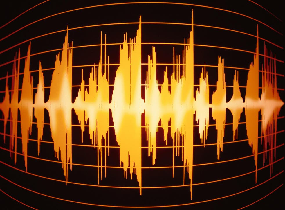 Sound wave: scientists have been using data collected from people making phone calls to help create unique voice ID software
