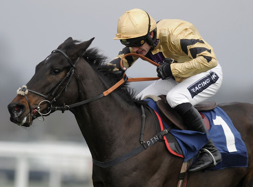 The French import Fago won impressively on his first start in Britain but fell when challenging for victory on the second