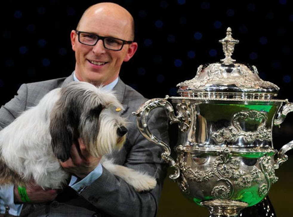 Jilly beat more than 20,000 other dogs to take the coveted Crufts title