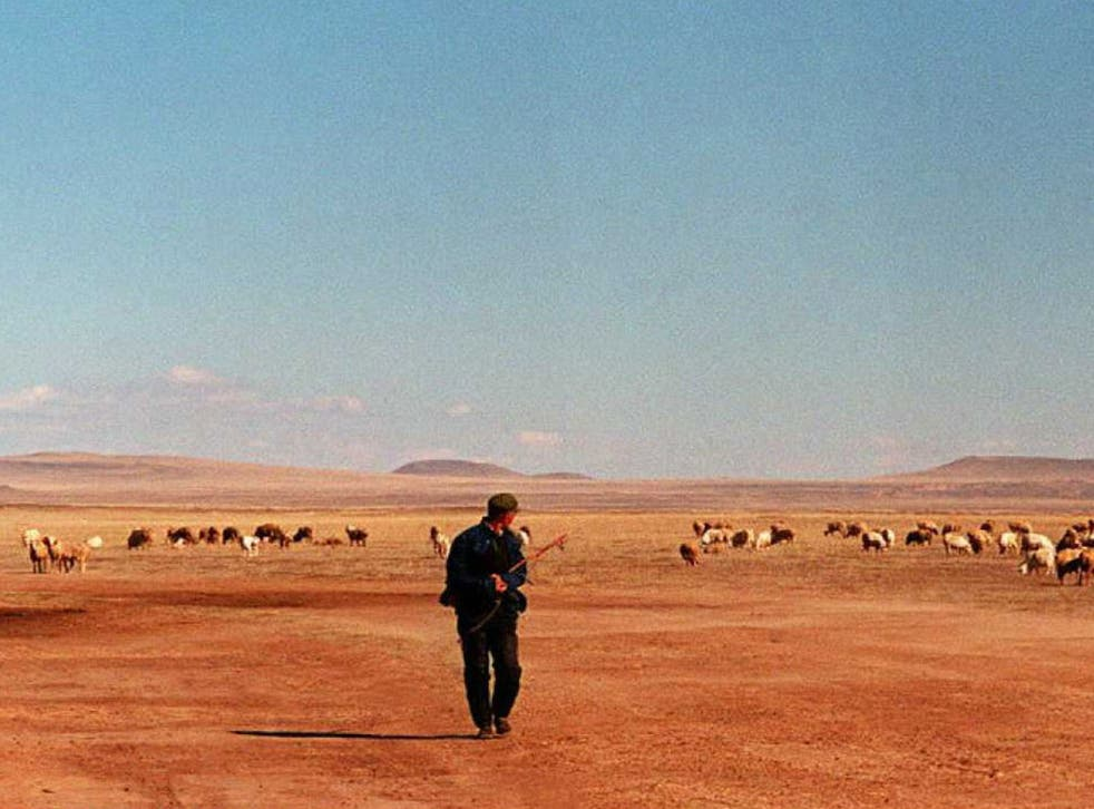 A herdsman tends his sheep on a barren pasture, in An Zhe Li Mu 15 October. As domestic animals in Inner Mongolia multiply quickly, the neglected pasture land is degenerating fast and is expected to become a desert within several years.